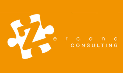 zercana consulting